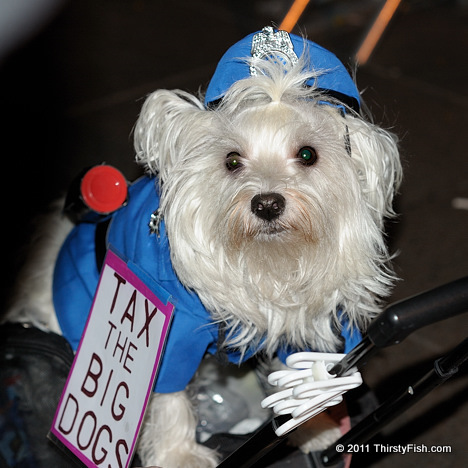 Occupy Wall Street: Tax The Big Dogs