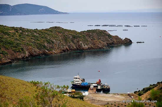 Kucukbahce Fishing Boats and Fish Farms