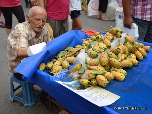 Indian Figs - Ethnicity vs Culture
