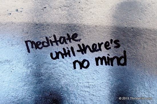 Meditate Until There Is No Mind